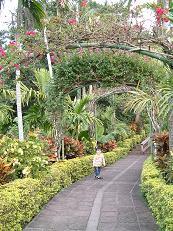 東南植物楽園5