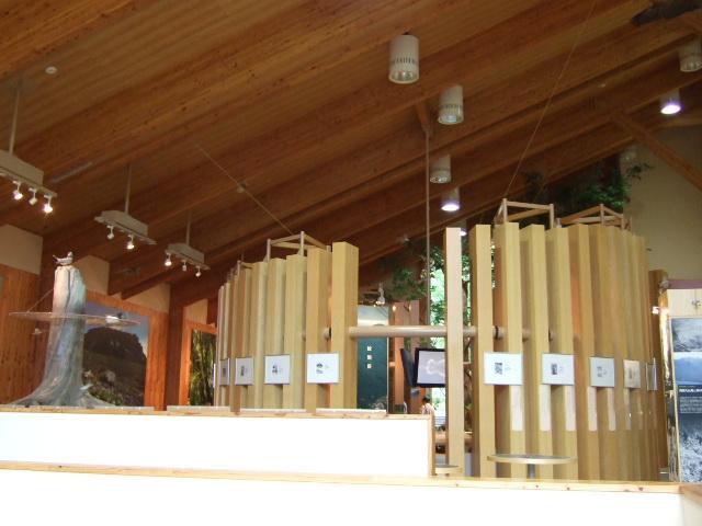 支笏湖ビジ4