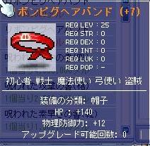 20061230223410.jpg