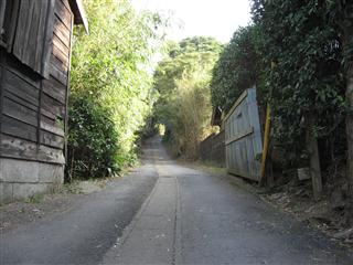 畑への道・・・・小川町