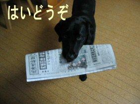 IMG_0388.jpg
