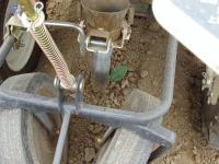 キャベツ定植機械~ペリカン~