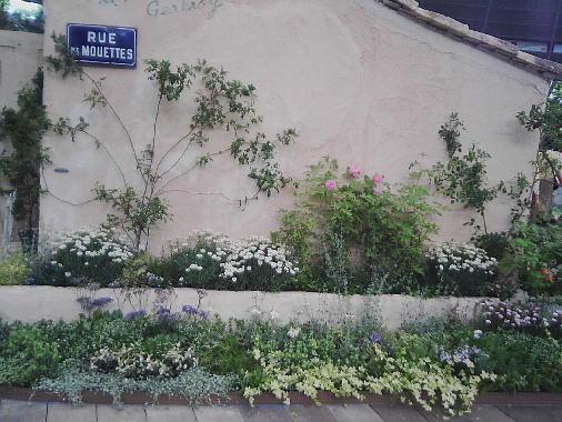 壁際花壇2