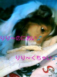 070214_1009~01001001.jpg