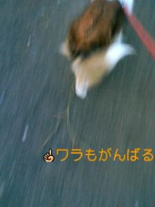 070221_0629~01001.jpg
