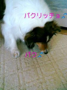 070224_1100~02001001.jpg