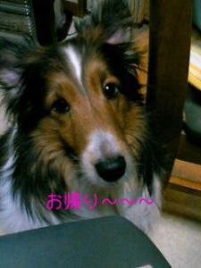 070330_2008~01001.jpg