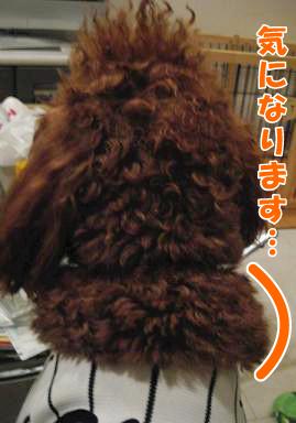 毛が気になります…
