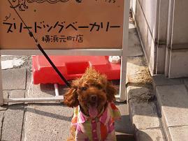 横浜・元町にきました