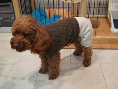 つづいてセーターのつなぎ系