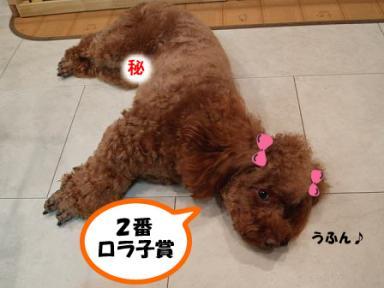 2番☆ロラ子賞