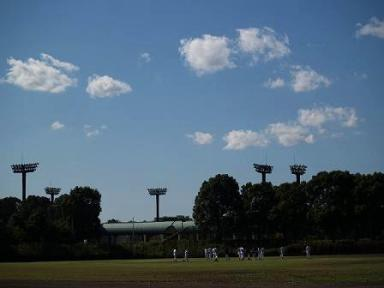 台風一過で野球日和