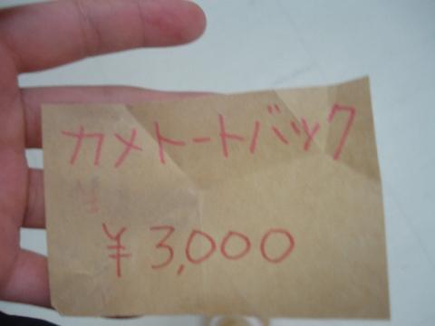 DSC05601_a.jpg