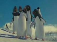 ペンギンのかわいいダンス!!