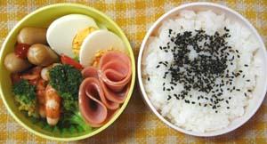 お弁当シリーズ11