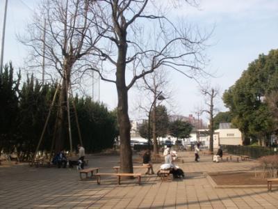 マック駒沢公園ドッグラン004