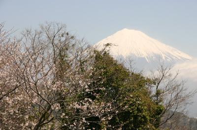 弾丸旅行富士山02