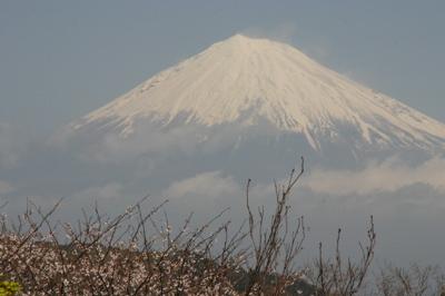 弾丸旅行富士山03