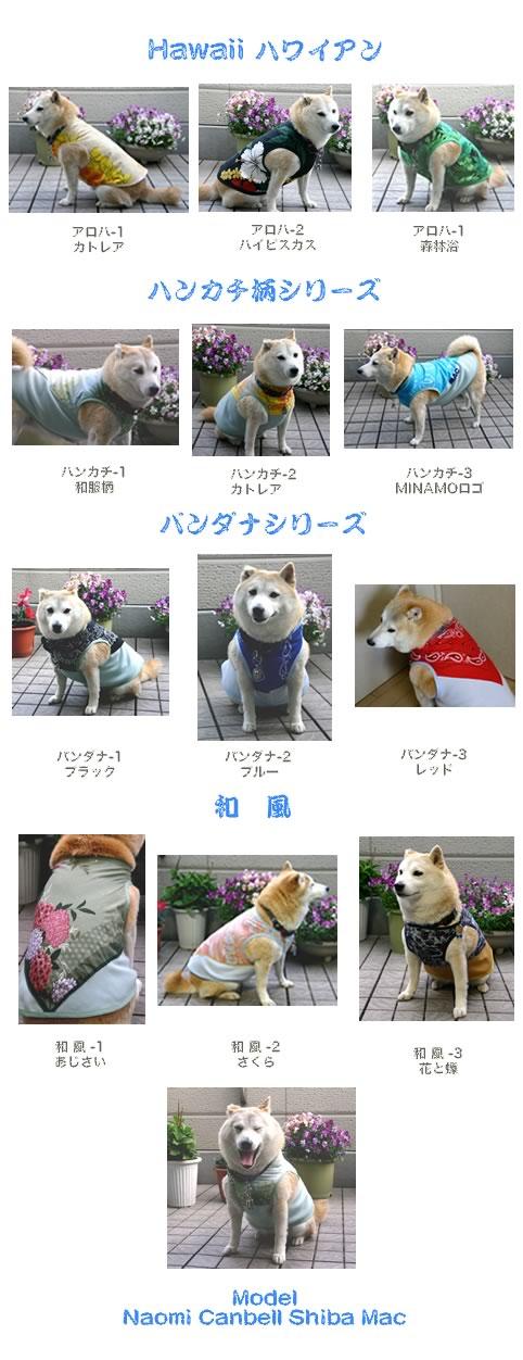 柴犬マックのファッションショー