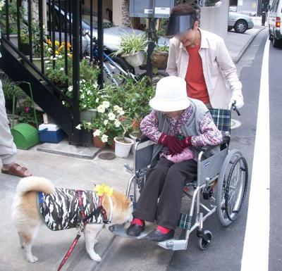 おばあちゃん散歩02