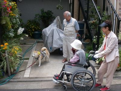 おばあちゃん散歩01