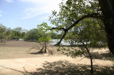 魅惑のランカウイ島06