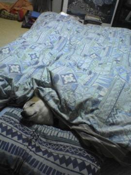 マック寝る01
