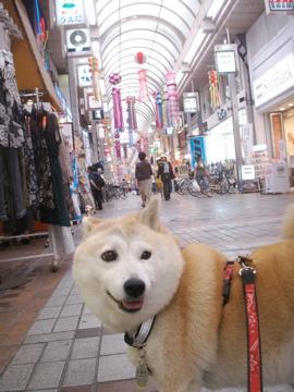 マック武蔵小山商店街散歩01