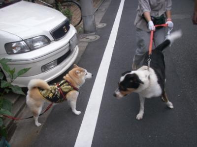 商店街お散歩02