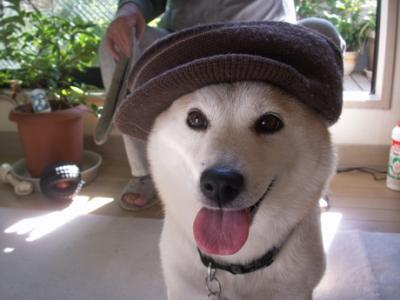 マック帽子02