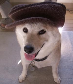 マック帽子03