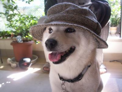 マック帽子05