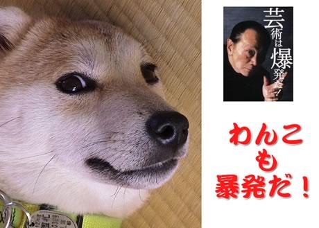 岡本マック01