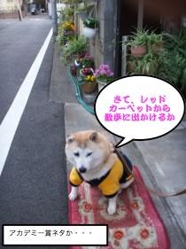 お散歩マック001