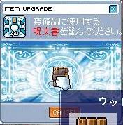 20070518115844.jpg