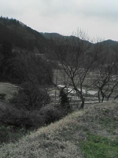 田舎(゚Д゚)・・・