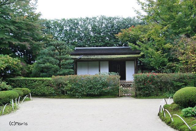 12-07shisendou020.jpg