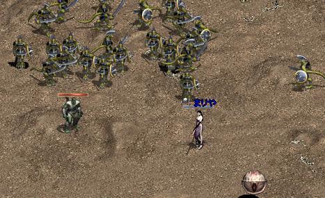 2006112510.jpg