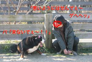 IMG_8141_24.jpg