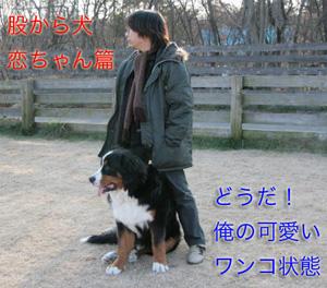 IMG_8411_27.jpg