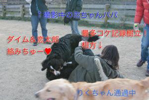 IMG_8436_30.jpg