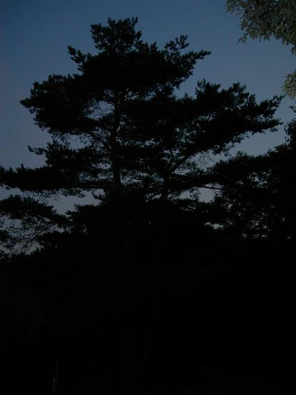 kabutoyama4.jpg