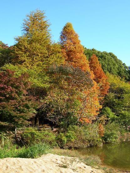 kabutoyama6.jpg