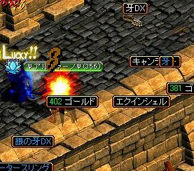20070320065015.jpg