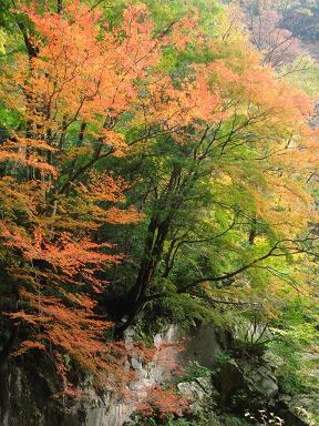 神庭の滝 040ブログ用大