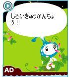 snipping_merowindow_kyuji16.jpg