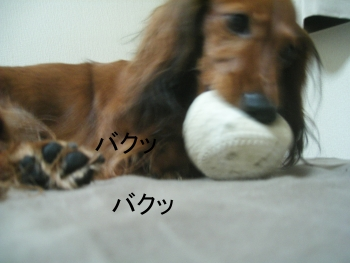 chi_ball_04