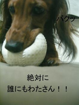 chi_ball_06