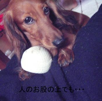 chi_ball_07