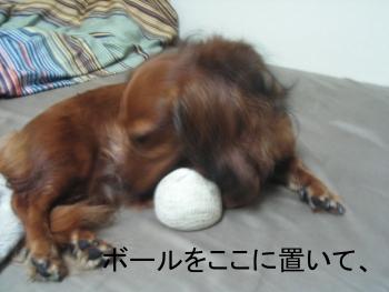chi_ball_11
